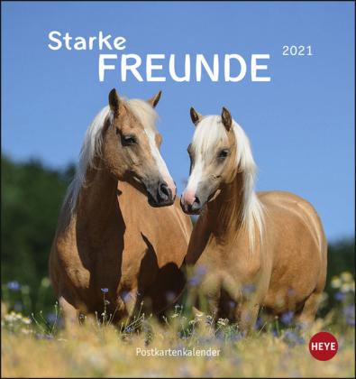 Pferde Postkartenkalender - Starke Freunde Kalender 2021