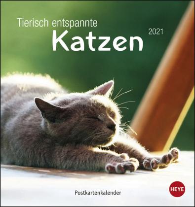 Tierisch entspannte Katzen Postkartenkalender Kalender 2021