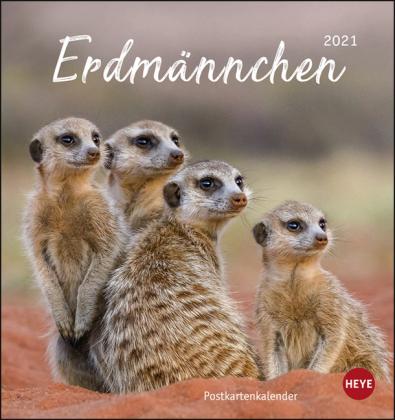 Erdmännchen Postkartenkalender Kalender 2021