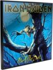 Iron Maiden - IRON MAIDEN Fear Of The Dark Crystal Clear Picture