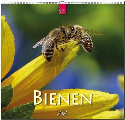 Bienen 2021