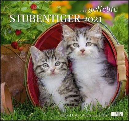geliebte Stubentiger 2021 - DUMONT Wandkalender - mit den wichtigsten Feiertagen - Format 38,0 x 35,5 cm