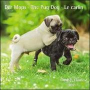 Der Mops The Pug Dog 2021 - Broschürenkalender - Wandkalender - mit herausnehmbarem Poster - Format 30 x 30 cm