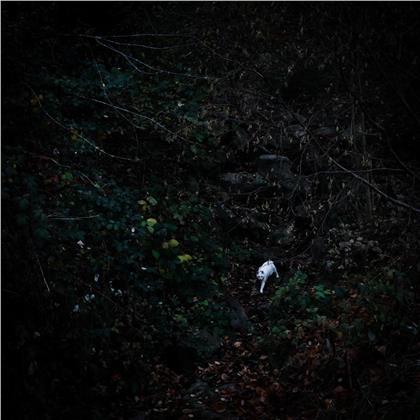 Anna & Stoffner - Gold (LP)