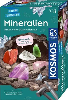 Mineralien Ausgrabungs-Set