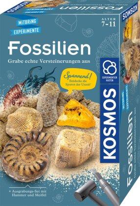 Fossilien (Experimentierkasten)