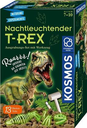 Nachtleuchtender T-Rex - Ausgrabungs-Set
