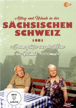 Alltag und Urlaub in der Sächsischen Schweiz 1981 - Drum grüsse aus der Ferne die Heimat 1000 mal