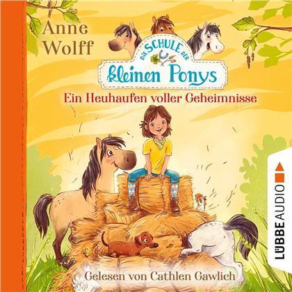 Anne Wolff - Die Schule der kleinen Ponys - Ein Heuhaufen volle (2 CDs)
