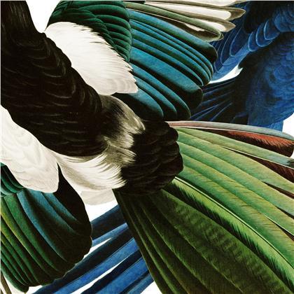 Dachs - Zu Jeder Stund En Vogelgsang (LP)