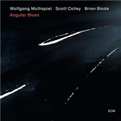 Wolfgang Muthspiel (*1965), Scott Colley & Brian Blade - Angular Blues (LP)