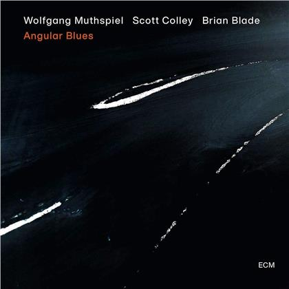 Wolfgang Muthspiel (*1965), Scott Colley & Brian Blade - Angular Blues