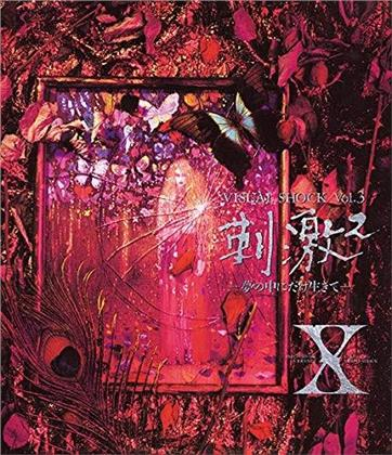 X Japan - Visual Shock Vol. 3