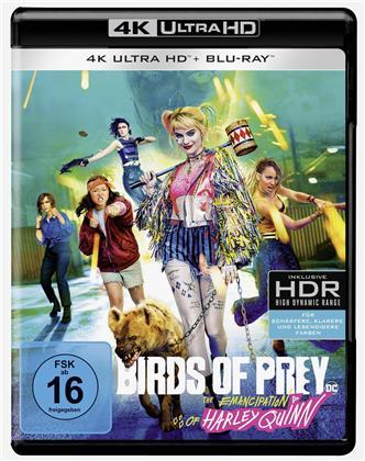 Birds of Prey - The Emancipation of Harley Quinn (2020)