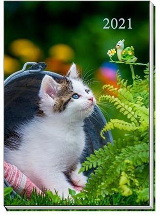 Taschenkalender A7 2021 Katze