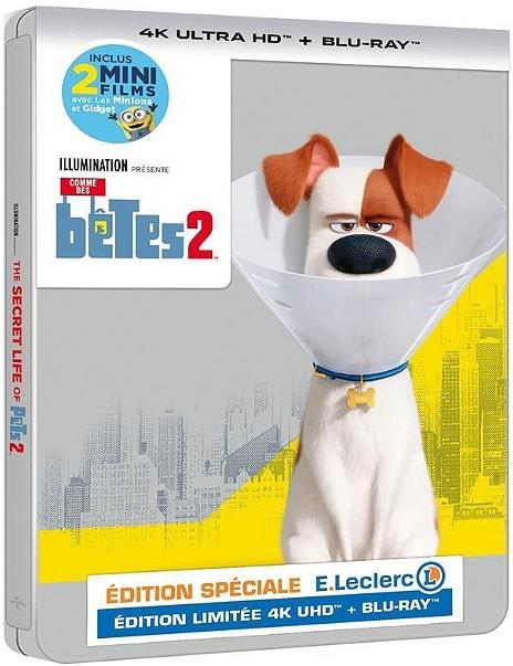 Comme des bêtes 2 (2019) (Limited Edition, Steelbook, 4K Ultra HD + Blu-ray)