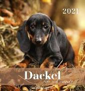 Dackel 2021 - Postkartenkalender