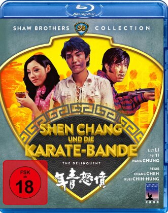 Shen Chang und die Karate-Bande (1973) (Shaw Brothers Collection)