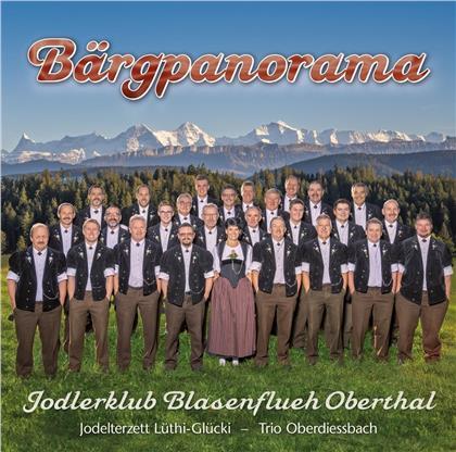 Jodlerklub Blasenflueh Oberthal - Bärgpanorama