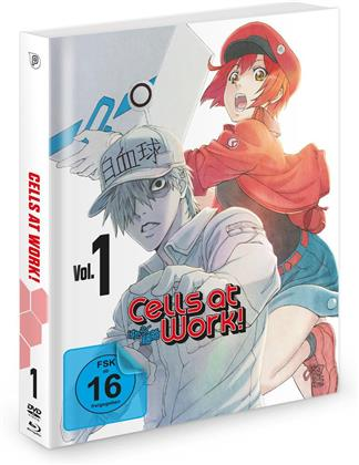 Cells at Work! - Vol. 1 (Blu-ray + DVD)
