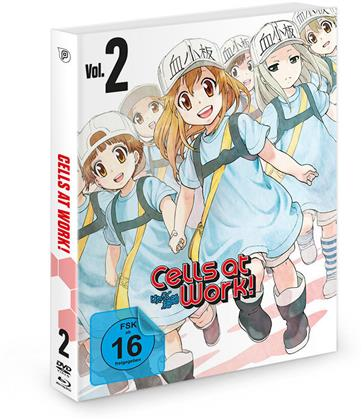 Cells at Work! - Vol. 2 (Blu-ray + DVD)