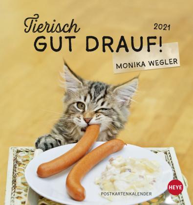 Tierisch gut drauf Postkartenkalender Kalender 2021