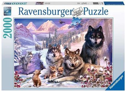 Wölfe im Schnee - 2000 Teile Puzzle