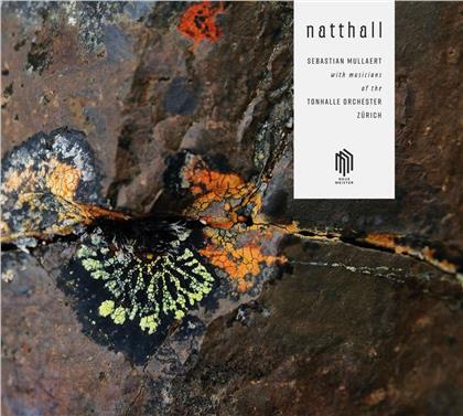 Sebastian Mullaert & Musicians Of The Tonhalle Orchester Zürich - Natthall