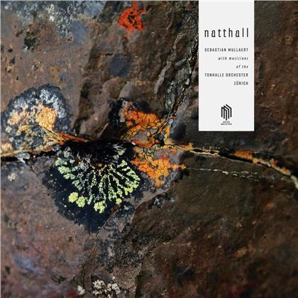 Sebastian Mullaert & Musicians Of The Tonhalle Orchester Zürich - Natthall (2 LPs)