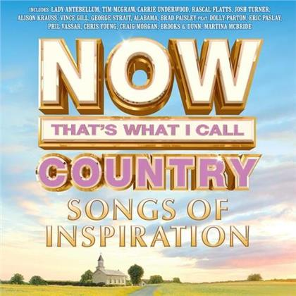 Now Country: Songs Of Inspiration (LP)