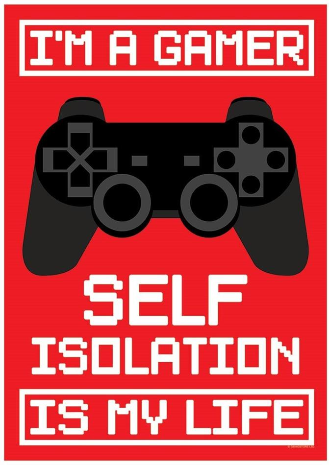 I'm A Gamer - Self Isolation Is My Life - Mini Poster