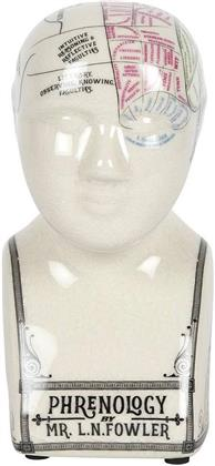 Small Crackle - Ceramic Phrenology Head