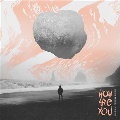 December Youth - How Are You (LP)