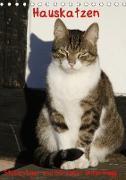 Hauskatzen (Tischkalender 2021 DIN A5 hoch)