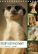 Erdmännchen-Meerkats-Surikate (Tischkalender 2021 DIN A5 hoch)