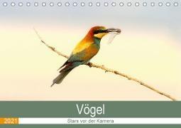 Vögel Stars vor der Kamera (Tischkalender 2021 DIN A5 quer)