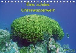 Eine schöne Unterwasserwelt (Tischkalender 2021 DIN A5 quer)