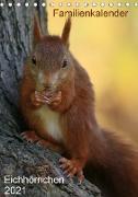 Eichhörnchen (Tischkalender 2021 DIN A5 hoch)