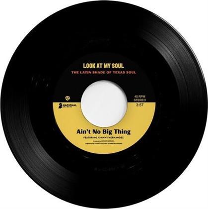 "Johnny Hernandez, Black Pumas & Kam Franklin - Ain't No Big Thing / Look At My Soul (7"" Single)"