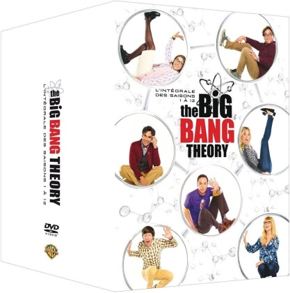 The Big Bang Theory - Saisons 1-12 (37 DVD)
