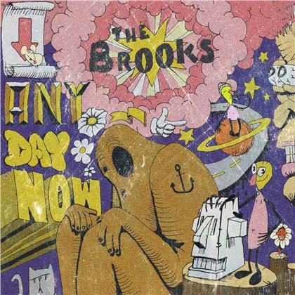 The Brooks - Any Day Now (LP)
