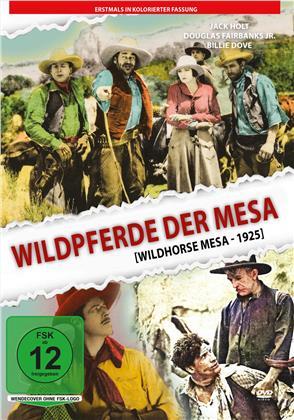 Wildpferde der Mesa - Kolorierte Fassung (1925)