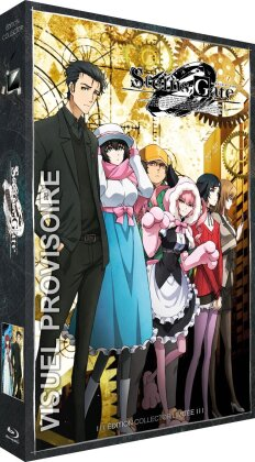 Steins;Gate 0 - Intégrale - Série TV + OAV (Limited Collector's Edition, 3 Blu-rays)