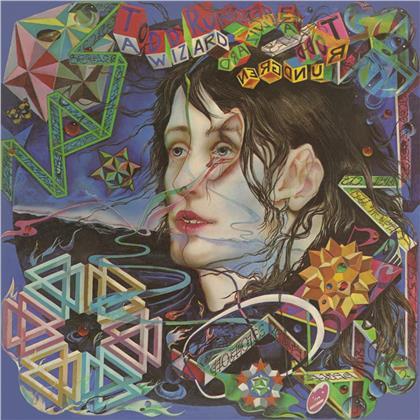 Todd Rundgren - A Wizard, A True Star (Music On Vinyl, 2020 Reissue, Black Vinyl, LP)