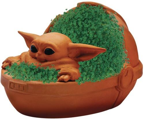 Star Wars The Child Chia Pet