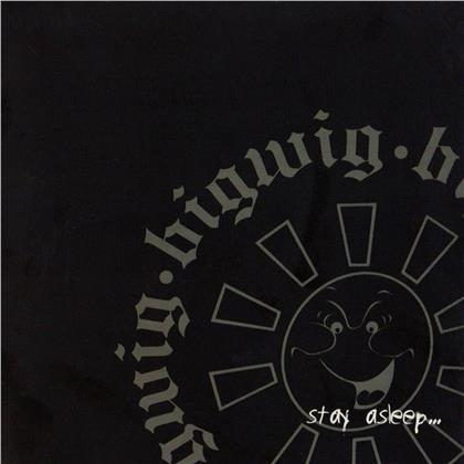 Bigwig - Stay Asleep (2020 Reissue, LP)