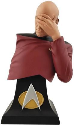 Icon Heroes - Sdcc 2020 Star Trek: TNG Picard Facepalm Bust Ltd Ed
