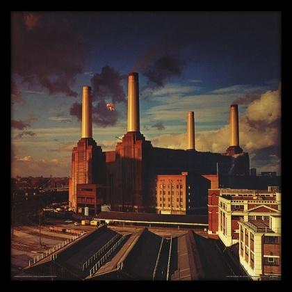 Pink Floyd: Animals Album Cover - Framed Print
