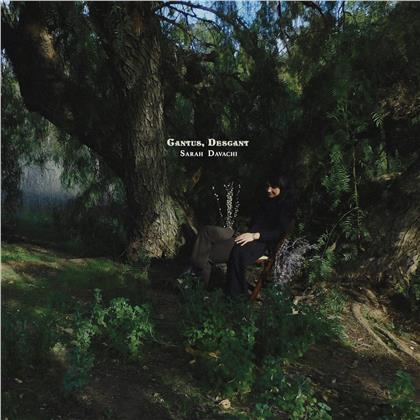 Sarah Davachi - Cantus, Descant (2 CDs)