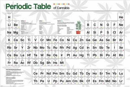 Periodic Table (Cannabis) Maxi Poster